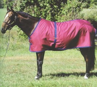 Jack S Turnout Blanket Custom Colors 36 76