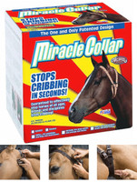 Miracle Collar for Ponies