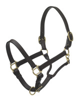 Ovation Triple Stitched Show Halter