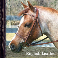 Bobby's Signature Raised, Fancy Bridle with Fancy Reins