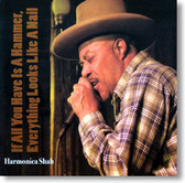 Harmonica Shah - If All You Have Is A Hammer