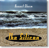 The Silicon - Desert Storm