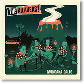 """Mundaka Calls"" surf CD by The Kilaueas"