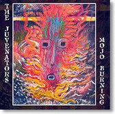 """Mojo Burnin"" blues CD by The Juvenators"