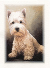 Westie Haircut Card