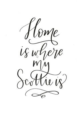 Scottie Calligraphy Card