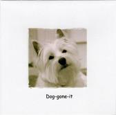 """""""Dog-gone it"""" Westie Belated Birthday Card"""