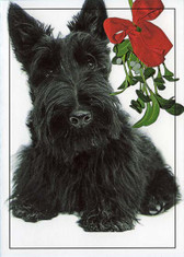 """Mistletoe Scottie"" Holiday Card"