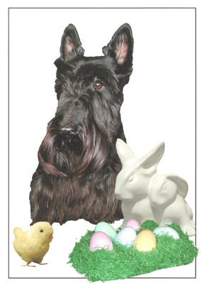 Scottie Happy Easter
