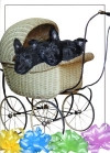 """New Beginnings"" Scottie Puppies Card"