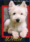 """For the Love of a Westie"" Photo Card"