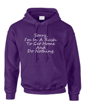 Adult Hoodie Sorry I'm In A Rash Get Home Do Nothing Humor