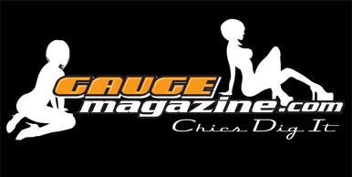 Gauge Magazine 2x4 Logo Banner Chicks Dig It