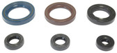 KTM125 GS/MX 84-86 ENGINE SEAL KIT KTM	GS125	1984-1986 KTM	MX125	1984-1986