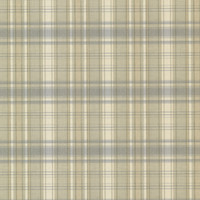 Bluewater Light Blue Sunny Plaid