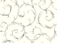 Black & White Acanthus Scr Oll Wallpaper Ab1961 By York Wallcovering