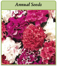 annual-seeds-logo2.png