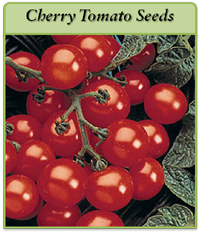 cherry-tomato-seeds-logo.png