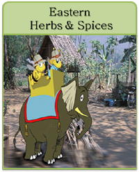 Eastern Herbs & Spices