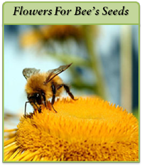 flowers-4-bees-logo2.png