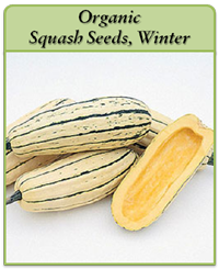organic-squash-seeds-winter-logo.png