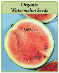 organic-watermelon-seeds-logo.png