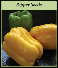 pepper-seeds-logo.png