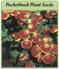 pocketbook-plant-seeds-logo.png