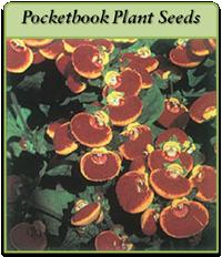 pocketbook-plant-seeds-logo.png