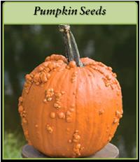 pumpkin-seeds-logo.png