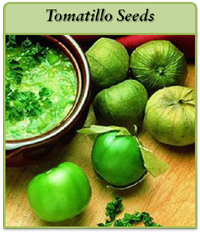 tomatillo-seeds-logo.png