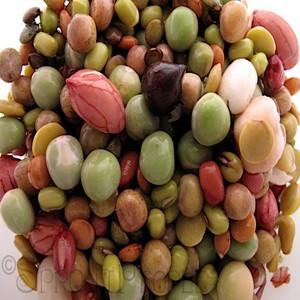 California Mix Organic Sprouting Seeds