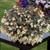 Bossa Nova® IvoryTuberous Begonia Seeds