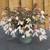 Bossa Nova® Pure White Tuberous Begonia Seeds