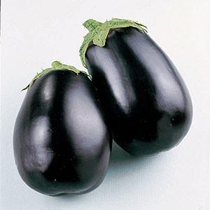 Organic Eggplant Seeds, Imperial Black Beauty