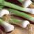 Organic Sweet Bunching/Scallion White Onion