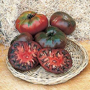 Organic Tomato Cherokee Purple