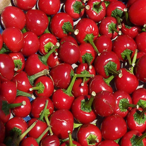 PEPPER RED CHERRY HOT