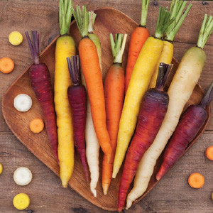 Rainbow Mix Carrot