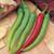 Garden Salsa Hot Red Chili Pepper