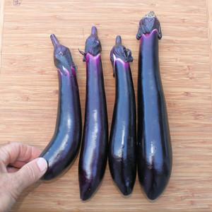 Japanese Millionaire Eggplant