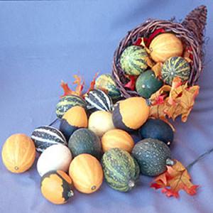 Goblin Eggs Mix Gourd