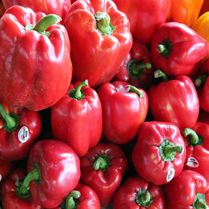 Red Beauty Sweet Bell Pepper