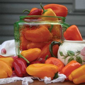 Yummy Mix Sweet Bell Pepper