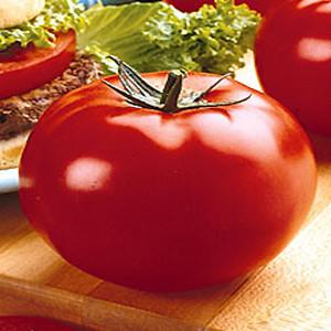 Big Beef F1 Tomato
