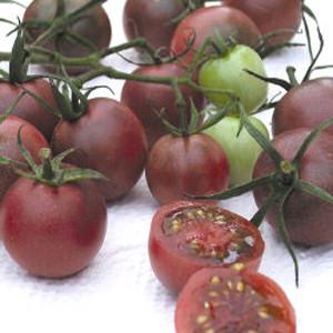 Cherry-Black Cherry Tomato