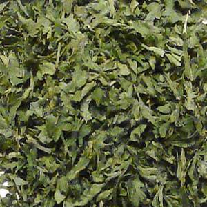 Chili Pepper Flakes Green Jalapeno OG