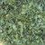 Sage Leaf Crushed Dalmatian #1