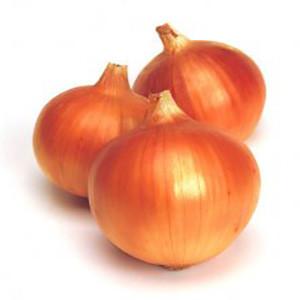 Onion Yellow Superex Maui- Asian Vegetable