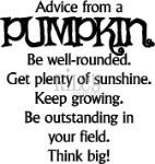 Advice from a Pumpkin